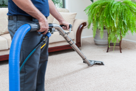 Pro Clean Carpet Care Serving The San Jose Area Since